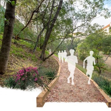 Rendered view of typical cross country running trail section.