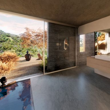 Interior view of modern board-formed concrete spa and plunge pool. A sliding door allows access and views to the garden and landscape outside.